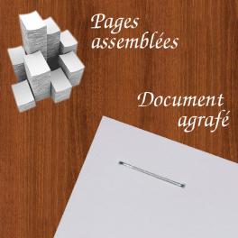 Dossier, livre avec pages assemblées ou agrafées